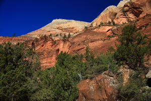 Zion Canyon near the Grotto