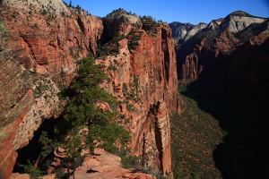 Last bit of trail down Angels Landing