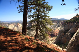 On the West Rim, looking down towards Telephone Canyon