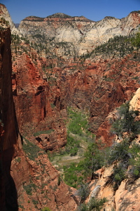 Zion Narrows and the Virgin River