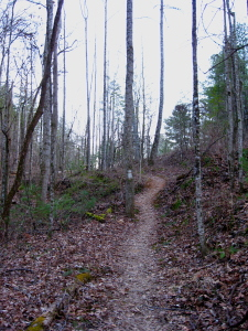 Clemmer Trail