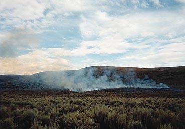 Turner Fire, Dinosaur National Monument, 2001