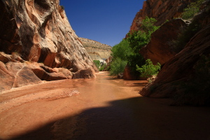 Hackberry Canyon