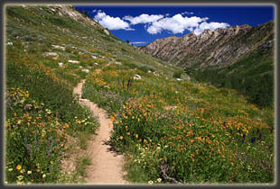Island Lake Trail in the Ruby Mountains, Nevada