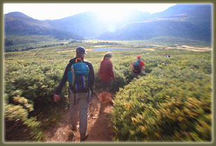 On the trail to Mt Bierstadt