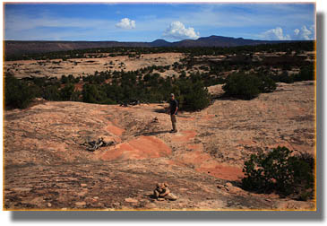 Dave on the Mesa Trail between Kachina and Sipapu Bridges
