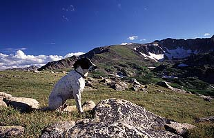 Frank checks out Grassy Pass in the Rawah Wilderness of Colorado