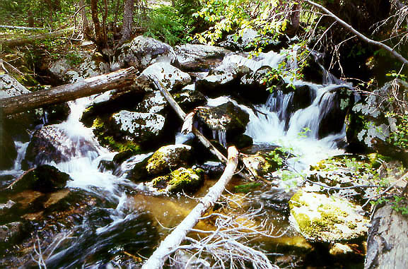Falls on Roaring Creek, Roosevelt National Forest, Colorado
