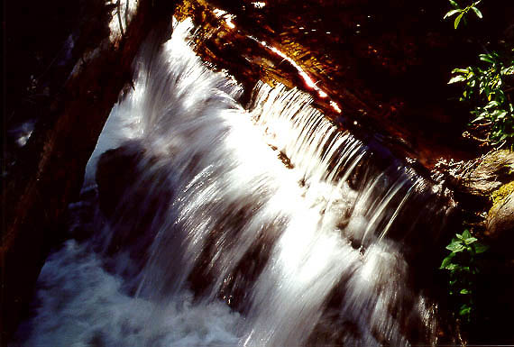 Falls on Roaring Creek; Roosevelt National Forest, Colorado