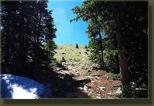 Trail goes above treeline