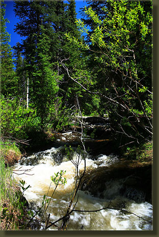 Pennock Creek in full spring runoff