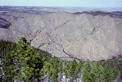 Poudre Canyon from Youngs Mt