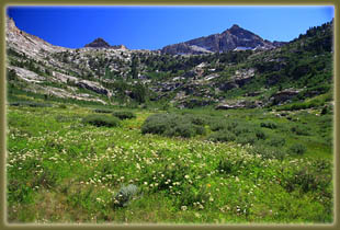 Thomas Canyon, Ruby Mountains, Nevada