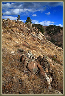 Washout Gulch, Roosevelt National Forest, Colorado