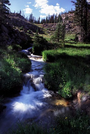 watefall in Mt Zirkel Wilderness